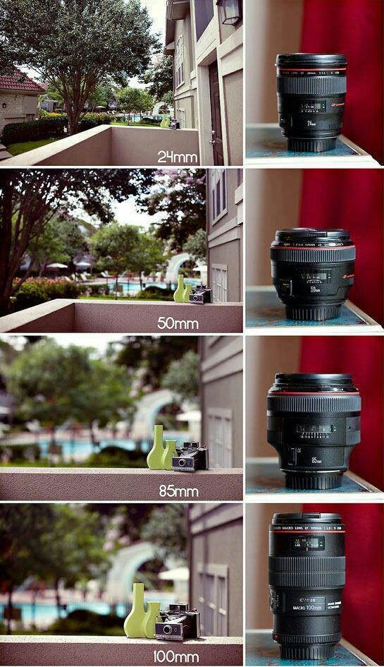 انواع لنز عکاسی