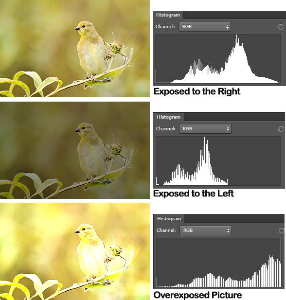 تفسیر نمودار هیستوگرام در سه عکس