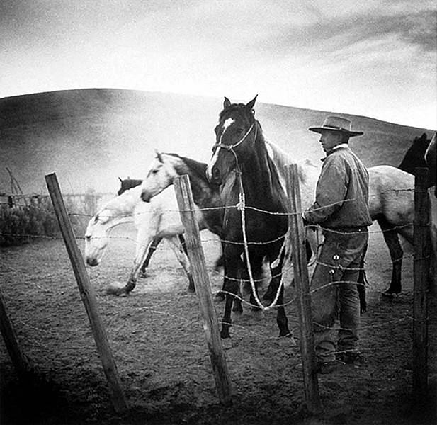 عکاسی از کابوی آمریکایی