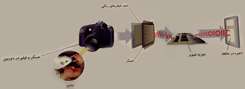 چگونه عکس در دوربین دیجیتال تشکیل می شود